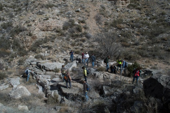 Students walking around a portion of the creek bed where many noutaloids were found.