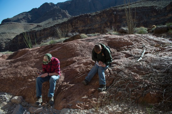 Students taking notes and making observations at the Great Unconformity.