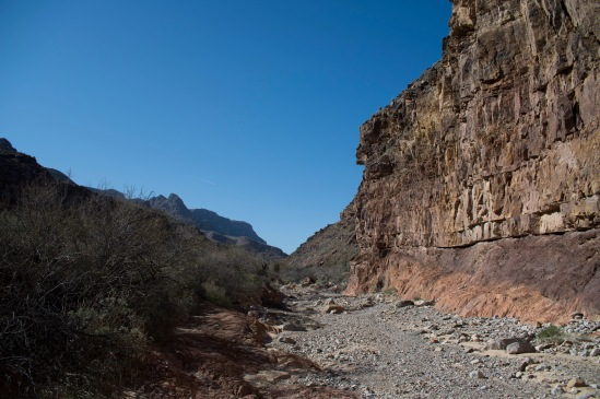 At the Great Unconformity, looking up Peach Springs Canyon.