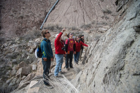 Dr. Whitmore points out a dinosaur bone in the rock formation on a short hike in the Dinosaur National Monument.