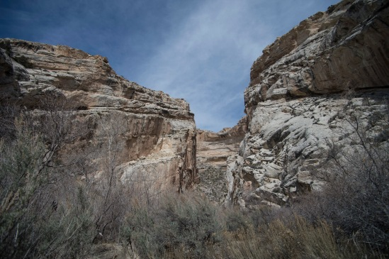 We drove further into the Dinosaur National Monument. After eating lunch, we took a hike into the Box Canyon.