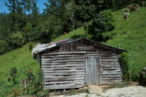 One of several building on the mountain where the coffee is processed.