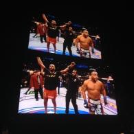Day 003 - UFC 182 - Jon Jones defeats Daniel Cormier.